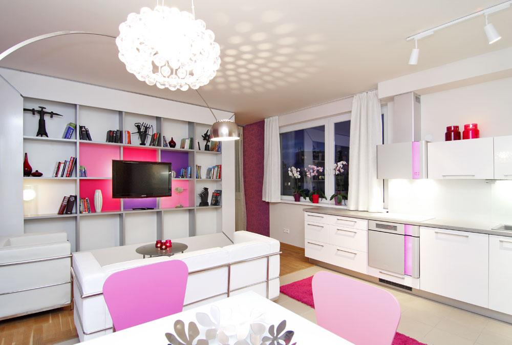 Podľa Michala Staška by mal priestor vmalom byte prirodzene plynúť, riešenia by nemali pôsobiť násilne. Tu nahralo logike rozdelenia bytu na dve miestnosti rozmiestnenie okien, plynulosti celku pomohol dizajnér aj jednotnou farebnosťou aštýlom celého obytného priestoru – napríklad farebnosť apodsvietenie policovej zostavy vobývačke korešponduje sfarebným podsvietením na spotrebičoch vkuchyni.