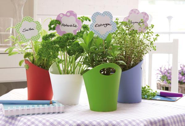 Kvetináč na bylinky od firmy Koziol dá sa využiť aj ako držiak do kúpeľne alebo kuchyne, rôzne farby aveľkosti. Cena od 6 €.