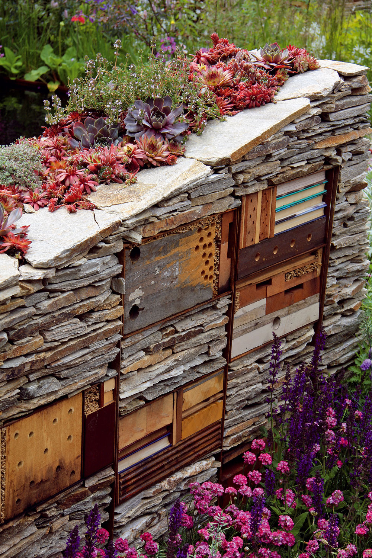 Viacúčelové múriky Nápadné sú stredne vysoké akratšie dekoratívne kamenné múriky, ktoré oddeľujú jednotlivé záhradné časti (azároveň slúžia na pestovanie rastlín). Okrem toho sú múriky útočiskom pre užitočný hmyz a, čo ma prekvapilo, aj konečnou pre staré drevené hračky, fragmenty či knihy, ktoré už majitelia prečítali avdome im zaberajú zbytočne veľa miesta. Tu nezavadzajú, apredsa len je lepšie nechať ich rozpadnúť niekde vzáhrade, ako spáliť či vyhodiť. Vspojení sbujnou aprírodne pôsobiacou výsadbou nevyzerajú zle. Múriky sú zároveň zaujímavou kulisou pre množstvo pestrofarebných trvaliek, ktoré kvitnú od jari do jesene adodávajú energiu každému, kto sem zavíta.