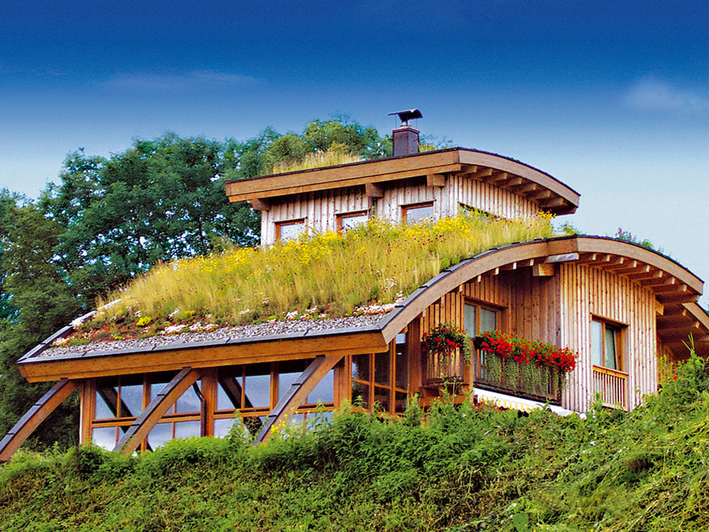 Všetko o zelených strechách