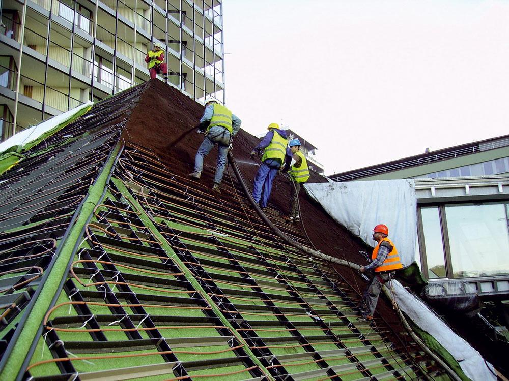 Na uloženie zelenej strechy terasových domov v podnoží rezidenčného komplexu Central Park v Prahe bol použitý podporný systém vytvorený zo sústavy nosníkov položených v smere spádu strechy a medzi ne vkladaných horizontálnych priečok. Do tohto protišmykového roštu sa následne pod tlakom fúkal primerane vlhký substrát. Bol to jediný vhodný spôsob dopravy substrátu na strechu s takým veľkým sklonom (45 až 50°) a zároveň zabezpečoval dostatočné zhutnenie substrátu a jeho natlačenie do jednotlivých polí roštu. Následne sa položili predpestované vegetačné rohože (rozchodníkové koberce).