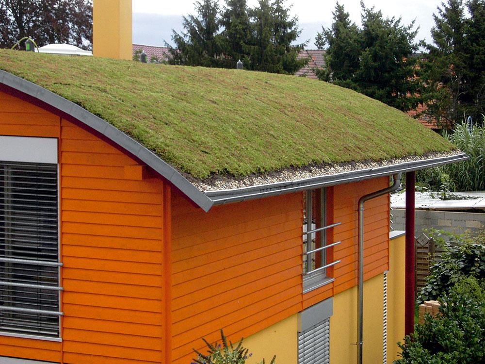 Na uloženie oblúkovej zelenej strechy je vhodné použiť ako podporný systém pevnú sieť, do ktorej sa vešajú protišmykové prahy.