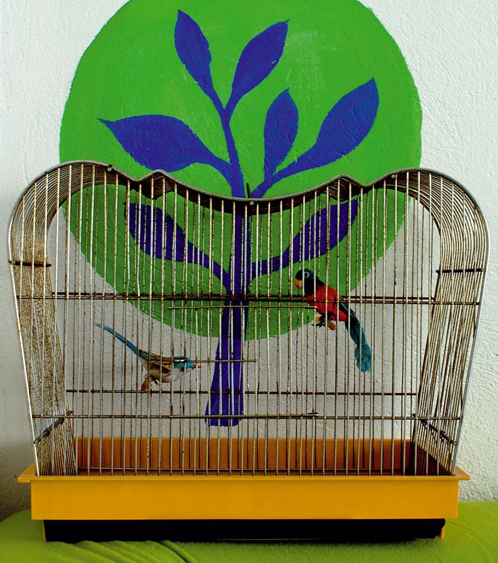 Živý prvok v byte zastupujú kvety. Klietka s papagájmi je len dekoračná kamufláž.