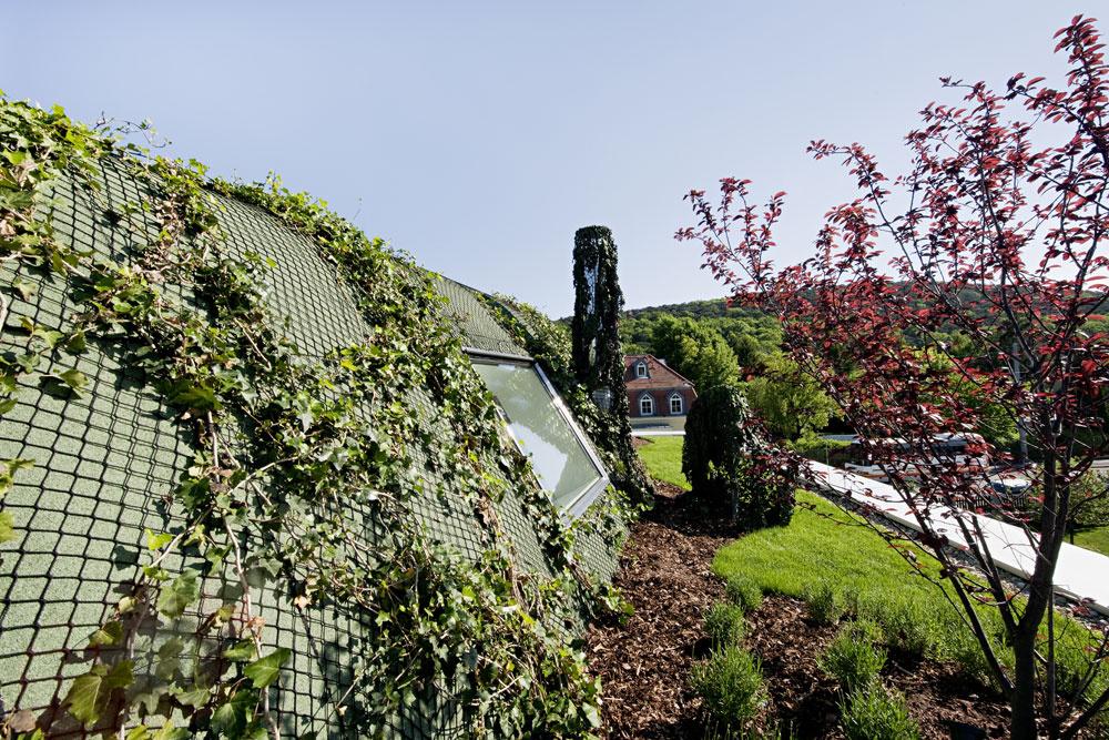 Architekti si dali záležať ina riešení strechy, pričom mysleli aj na jej zobytnenie. Pri ploche pozemku 500 m<sup>2</sup> to určite stálo za to. Dnes tak neslúži len ako ochrana domu, ale je aj rozšírením záhrady súžasným výhľadom do okolia – keďže dom stojí vštvrti bohatej na zeleň, je sa zo strešnej terasy na čo pozerať.