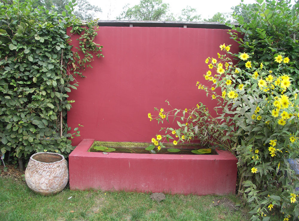Tmavoružová vodná nádrž sama osebe značne púta pozornosť, preto by knej boli vhodnejšie neutrálne biele alebo svetloružové tóny kvetov (veternice či jesenné astry). Sjasnožltými echinaceami ide opríliš divokú kombináciu.