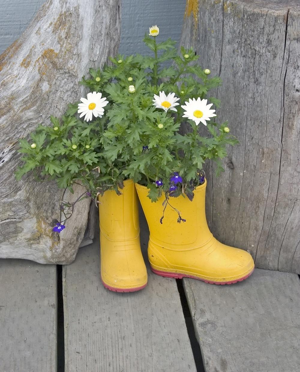 Kvitnúce gumáky. Ak sa chystáte vymeniť ich za nové, do koša ich nehádžte. Vyzdobte ich akrylátovými farbami, naplňte hlinou a kvety do nich jednoducho zasaďte. Gumákový črepník rozveselí každú šeď či tmavý kút.