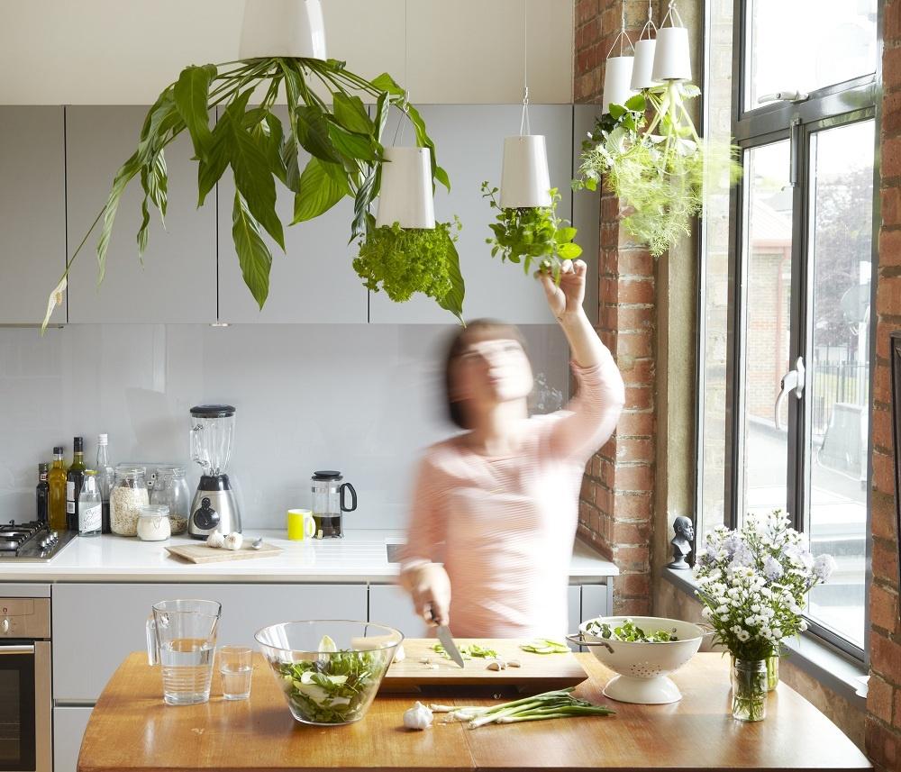 Bylinky horeznačky. Ak máte bylinky v dobrej kondícii, so stojkou problémy mať nebudú. Zaraďte ich do svojho jedálneho lístka a ony vám za to svojou prítomnosťou osviežia byt nielen farebne, ale aj netradičnou polohou.