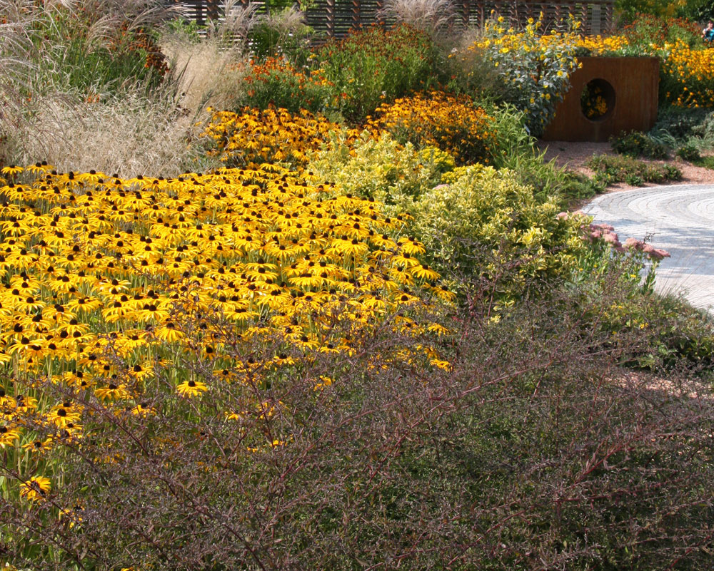 Záhrada, vktorej prevláda žltá, pôsobí optimisticky, hrejivo apobyt vnej pomáha zlepšiť náladu. Dokonca aj vdaždivom počasí je takáto kompozícia prívetivá.