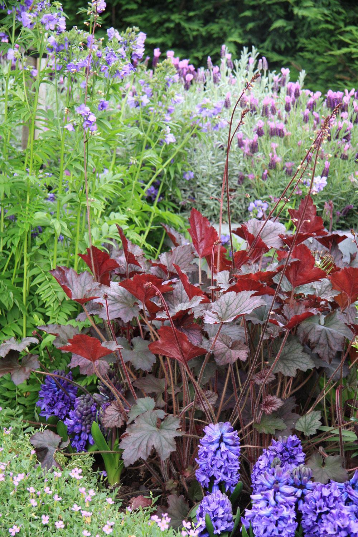 Záhrada, ktorá miluje farby