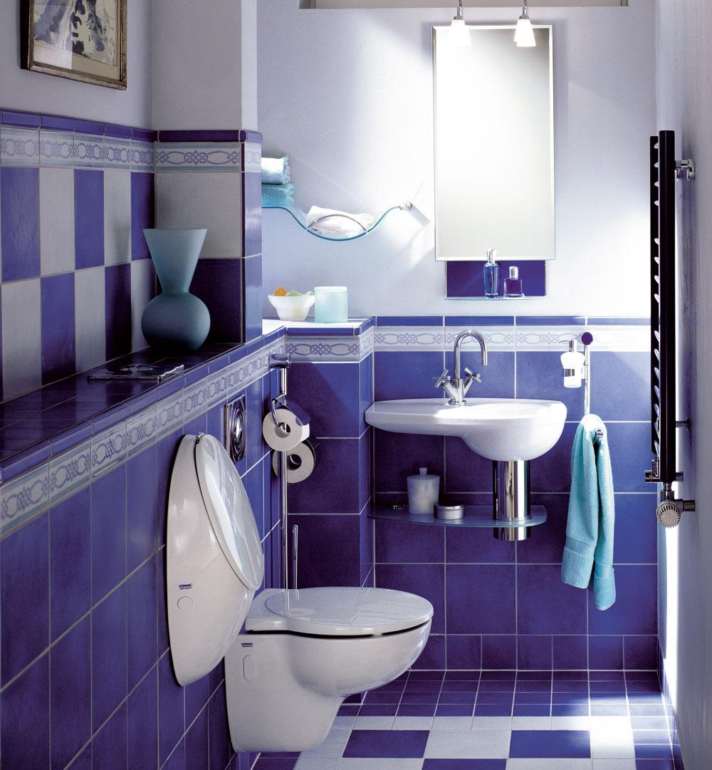 Pitná voda je zbytočne drahá, aby sa ňou plytvalo na splachovanie toalety. Rovnako dobre môže poslúžiť prečistená zrážková voda.