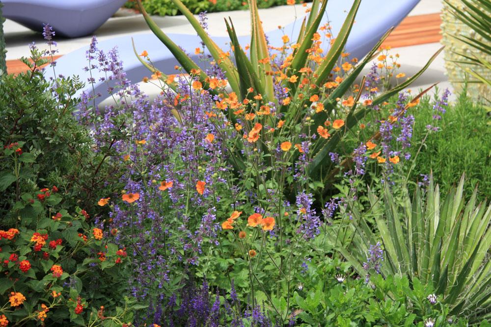 Okrem kvitnúcich trvaliek v záhonoch nechýbajú ani bylinky, napríklad myrta či rozmarín, ktorý počas letných večerov nádherne prevonia vzduch.