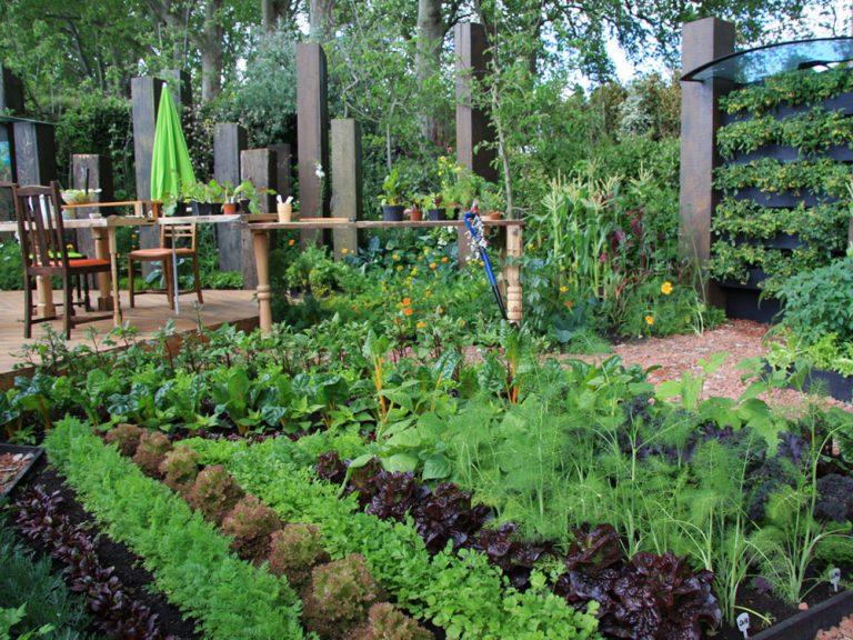 Nevšedná záhrada ako na zjedenie