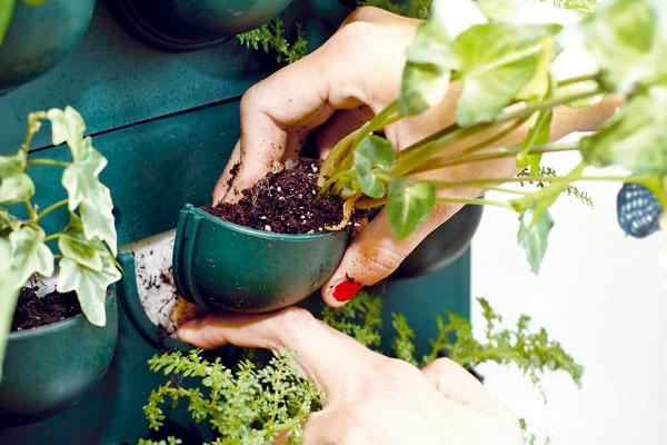 Netkaná textília sa ako prvá zasunie do priestoru zásobníka, odkiaľ nasáva vodu pre koreňový obal rastlinky.