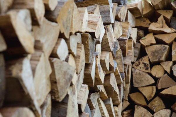 Je čas na prípravu palivového dreva