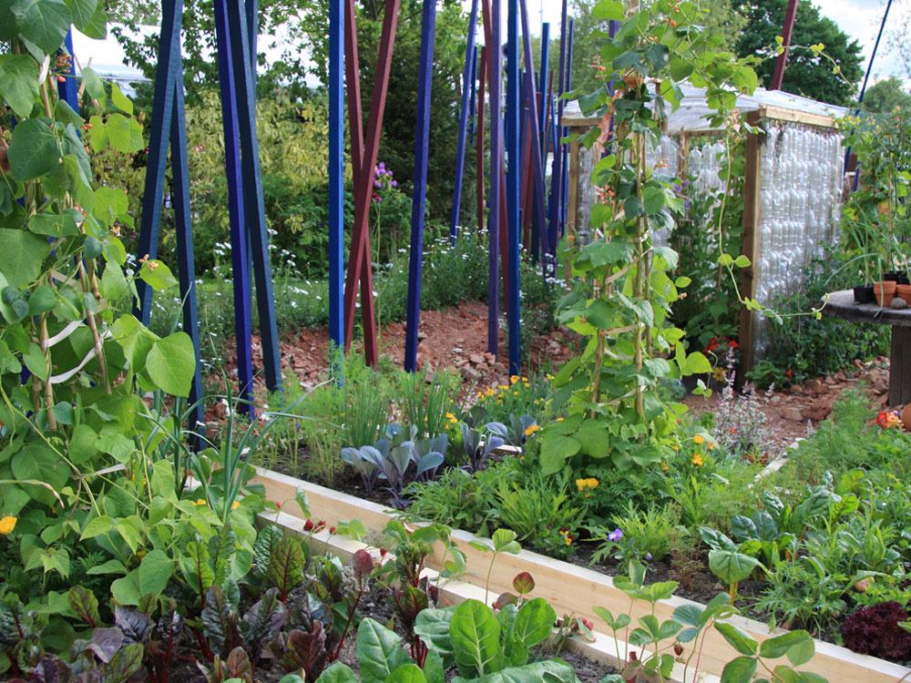 Pestrosť aharmónia   Pri koncipovaní zeleninového záhona striedajte rôznu zeleninu, čím viac sa budú odlišovať farbou alebo rastovou formou (trsovito rastúce, popínavé, plazivé ainé), tým budú záhony pútavejšie. Svojou rôznorodosťou vytvoria harmonický efekt.