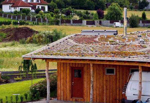 Vegetačné strechy podporujú zdravú klímu, tlmia hluk achránia strechu aj celú stavbu.
