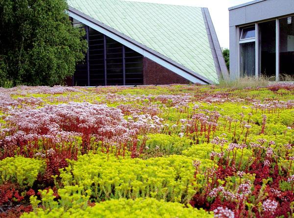 Plochá strecha ponúka svojim užívateľom pri jednoduchej arýchlej realizácii všetky dostupné variabilné možnosti povrchových úprav (od pochôdznosti cez pojazdnosť až po vegetačné strechy).
