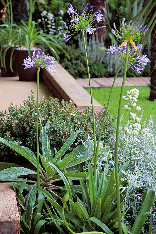 Záhrada, ktorá dýcha dovolenkovou atmosférou