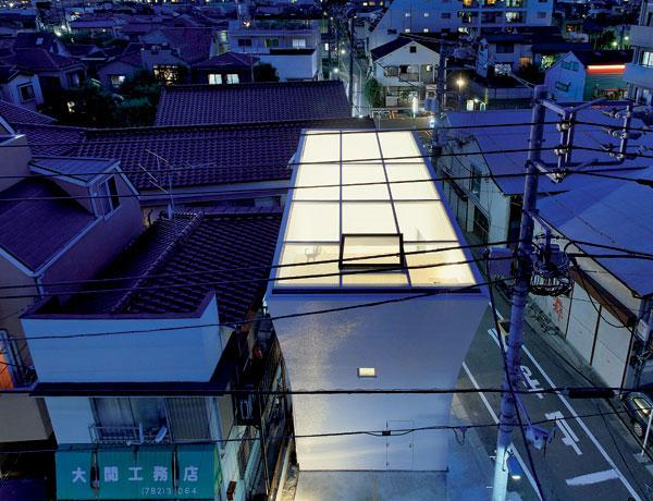 Tokijská slnečnica