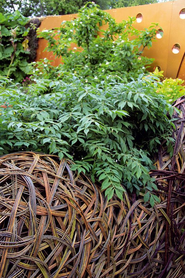 TIP do záhrady:  Prútené trendy Gule, zvieracie figúry, ihly, ploty, opory pre popínavé rastliny – to všetko sa dá vyrobiť zprútia. Vsúčasnom záhradnom dizajne obsadzuje tento materiál prvé priečky, predovšetkým čo sa týka tvorby vidieckej záhrady. Zapáčilo sa vám to? Tak potom už len dve rady: nezabudnite ošetriť prútený povrch špeciálnym náterom, aby lepšie odolával nepriazni počasia, anekombinujte príliš veľa materiálov.