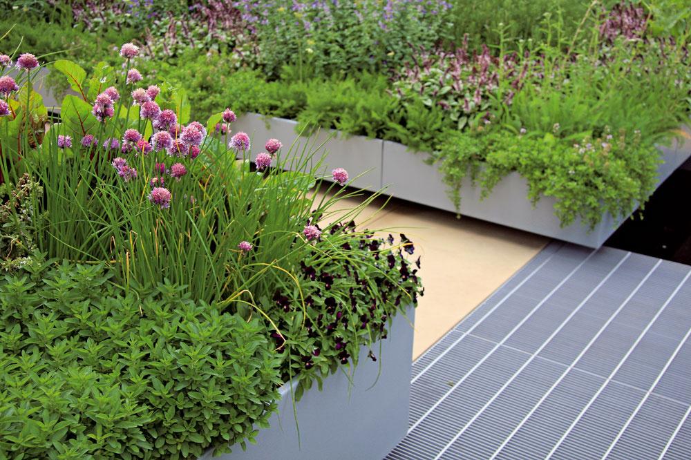 Kov Začal sa využívať len nedávno, najmä vmodernejších záhradách, arýchlo si získal svojich priaznivcov. Vzáhradnej tvorbe má zelenú najmä zinok, oceľ, hliník ašpeciálne zliatiny kovov. Populárne sú vyvýšené záhony skovovými stenami, kovové treláže na popínavé rastliny, vodné nádrže atakisto dláždenia či premostenia zkovových dielcov. Zaujímavé je aj spojenie rastlín akovu, môžete skúsiť vysadiť napríklad rastliny sarchitektonickým efektom (okrasné trávy) do kovovej nádoby.