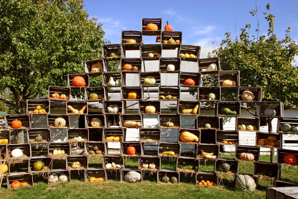 Ak nemáte na plot, nezúfajte. Postačia vám debničky, ktoré si nadekorujete sezónnym ovocím či zeleninou. V tomto období nadobudli dekoračné privilégium tekvice a tekvičky.