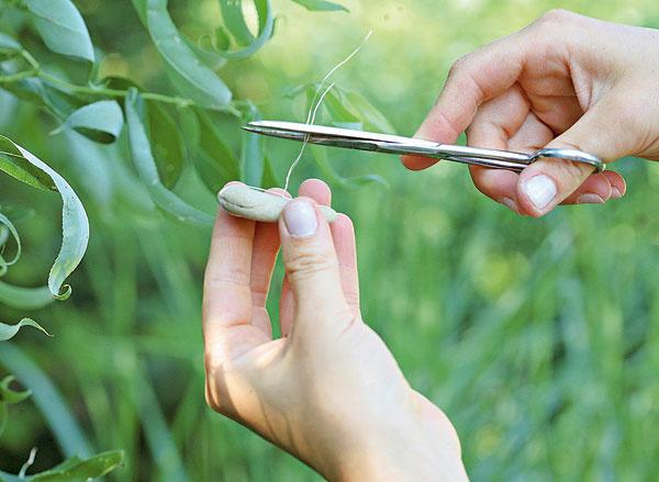 4. Zdrôtu nechajte asi 3 – 4  cm azvyšok odstrihnite.
