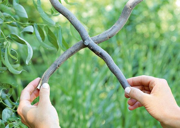 14. Odpíľte si dva rovnako dlhé konáriky,prekrížte ich avstrede spojte klincom.