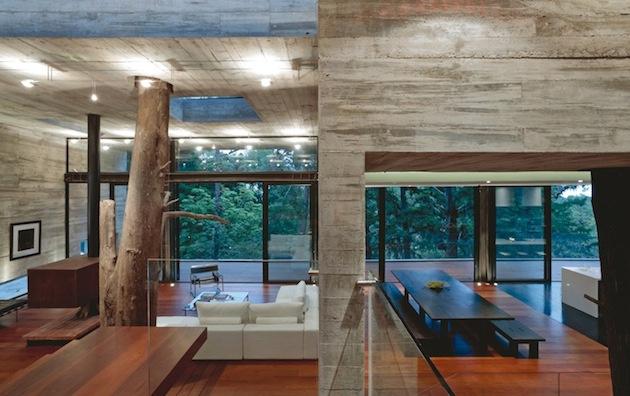 Dom, cez ktorý rastú stromy