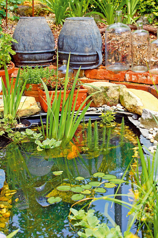 Malé záhradné jazierko privítali všetci obyvatelia záhrady. Zásobuje ho odstáta dažďová voda.
