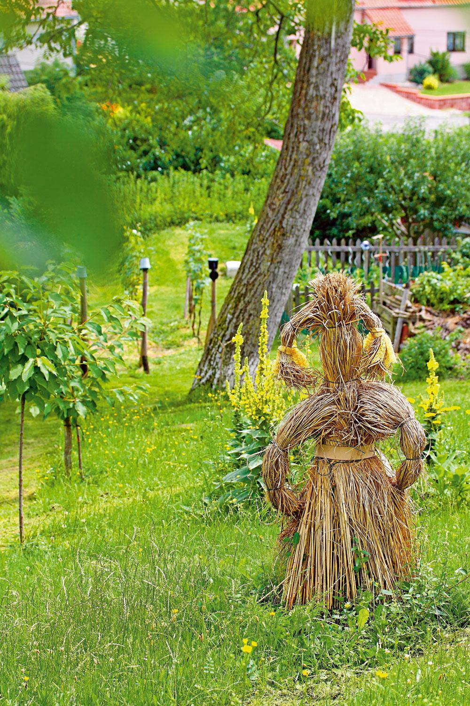 Aby rastliny mohli kvitnúť podľa ľubovôle, majitelia kosia hornú časť pozemku len niekoľkokrát ročne. Zatiaľ krehký stromček jarabiny oskorušovej chráni miestna divoká Venuša, samozrejme, takisto vzaručenej biokvalite.