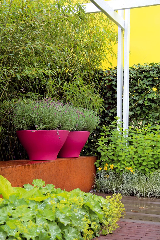 Výrazné farby Opäť téma, ktorá rezonuje na všetkých dôležitých podujatiach záhradníckych odborníkov. Farebnosť? Áno, avýrazná! Nebojte sa teda farebných plotov ani vegetačných nádob a, samozrejme, nezabudnite ani na hlavných aktérov – kvitnúce rastliny. Trendom je vytvárať nápadité kontrasty.