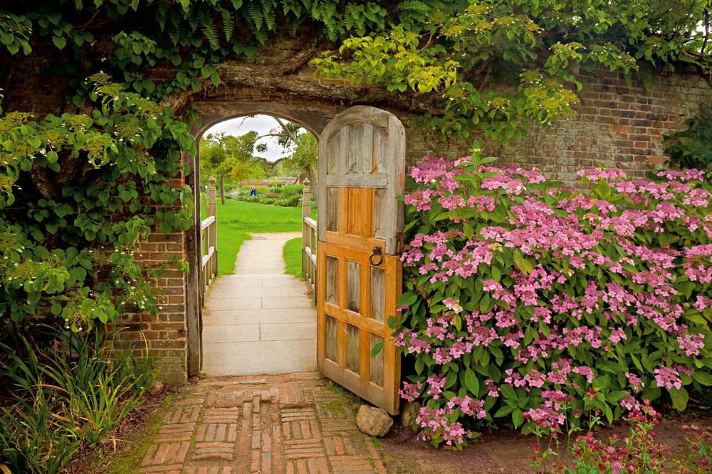 Vmalej záhrade sa sústreďte na popínavé rastliny astĺpovité dreviny.