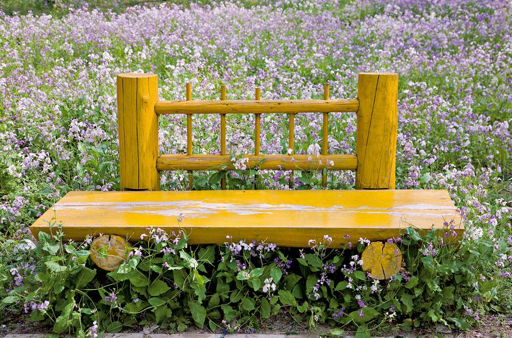 Rovnaký účinok však má aj lavička uprostred kvetinového záhona.