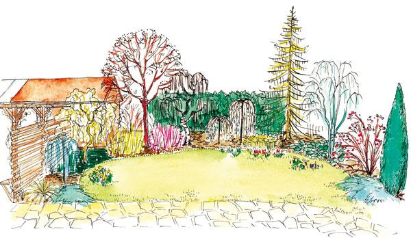 Vpredjarí budú záhradku zdobiť okrem farby vždyzelených drevín aj ich tvary, pri niektorých možno plody, ak ich počas zimy nevyzobú vtáky.