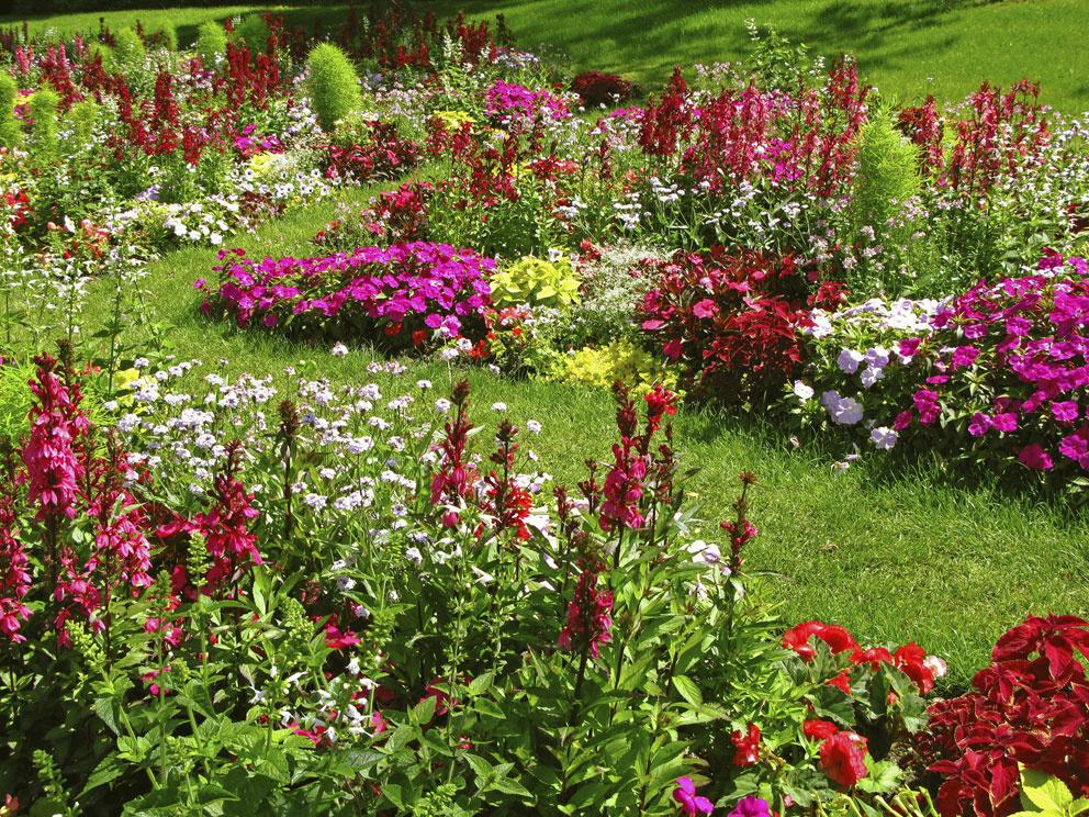 Navrhnite si záhradu príťažlivú od jari do zimy