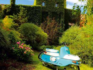 Krásna záhrada pre lenivcov s minimálnou údržbou