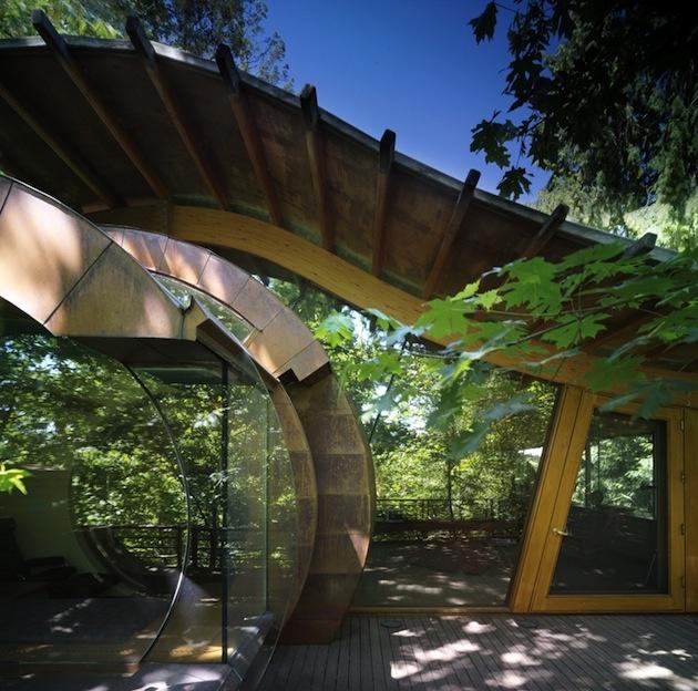 Je nielen obrovský, ale nezvyčajne zvlnenými a zaoblenými stenami zapadá do prirodzeného prostredia oregonského lesa, v ktorom sa nachádza.