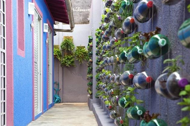 Stačilo si vybrať rastliny a použiť fľašu ako kvetináč. Ak máte dom v meste, väčšinou si nemôžete dovoliť príliš veľa kvetov. Iba ak ste ochotní zapratať si životný priestor črepníkmi. Je pekné, urobiť to, ale načo, keď nemusíte... Zaveste ich jednoducho na stenu.