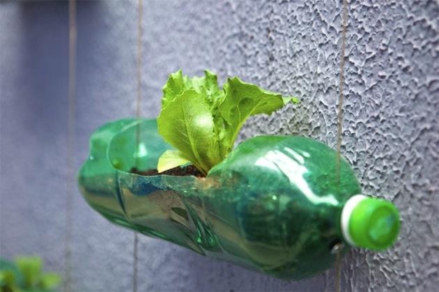 Ako dostať záhradu do PET fľaše