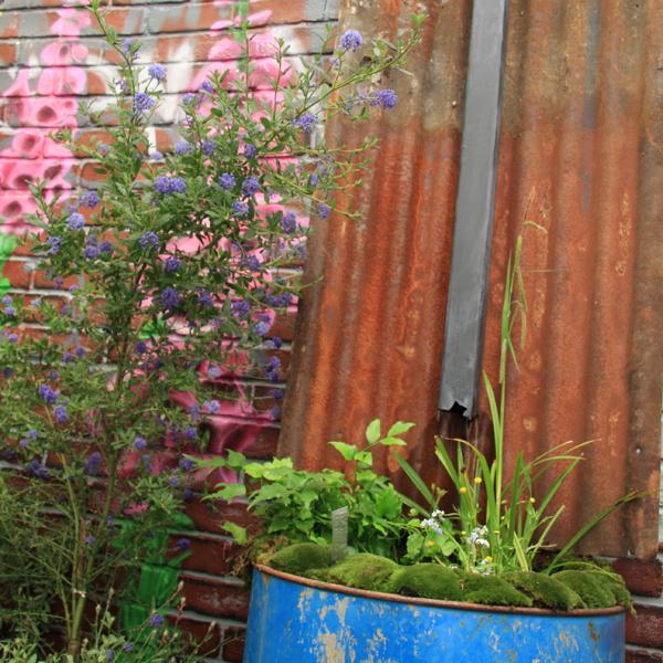 Netradičné nápady. Vtomto období často nastáva veľké upratovanie nielen záhrad, ale aj kôlní azáhradných domčekov. Kým veci vyhodíte, zvážte, či by sa niečo predsa len nezišlo. Zo starých odkvapových rúr či deravých kovových sudov môžete napríklad vytvoriť nový domov pre rastliny. Týmto spôsobom sa dá experimentovať tak vmestskej, ako aj vo vidieckej záhrade anájsť napríklad využitie preproblematický roh. Na mieste, kde je vlhko atieň, dobre porastú papraďorasty adariť sa bude aj machom. Na slnečnom mieste môže starý sud ožiť kvitnúcimi rastlinami.