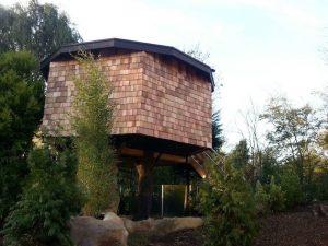 Brit postavil netradičný dom na strome a dnes na ňom zarába