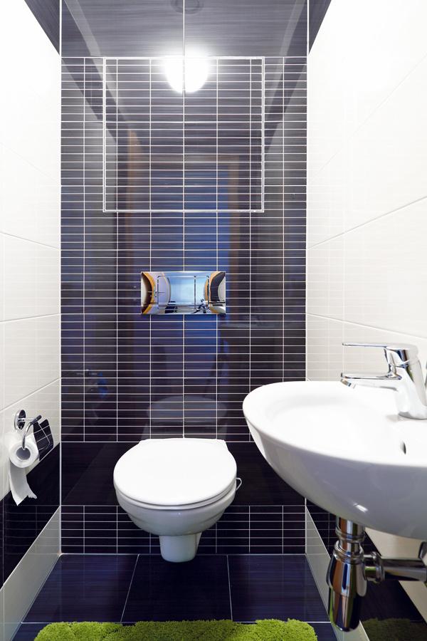 Okrem toalety vkúpeľni je tu na želanie domáceho pána aj samostatné WC.