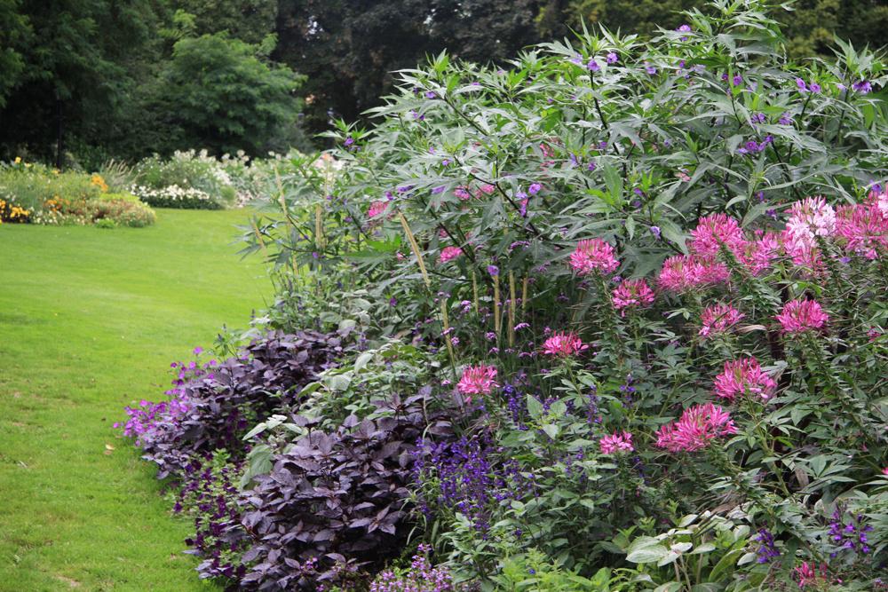 Na tvare záleží  Samotný tvar kvetinového záhona by mal byť ovplyvnený celkovým štýlom, ktorý vdanej záhrade prevláda. Prísne geometrické záhony (štvorce, kruhy, obdĺžniky) sa hodia do moderných mestských záhrad, nepravidelné kvetinové záhony so zvlnenými okrajmi zase vyniknú na vidieku avprírodne koncipovanej záhrade. Výsledok je zaujímavý, aj keď časť kvetinového záhona voľne vybieha do trávnatej plochy, prípadne kodpočívadlu.