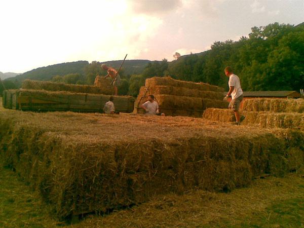 """""""Ako na potvoru, termín padol práve na víkend, keď sa konala Pohoda, najväčší hudobný festival na Slovensku. Samozrejme, všetci naši kamaráti pripravení pomôcť boli tam. Nastúpili sme teda len vúzkom rodinnom zložení, aby sme na traktorovej vlečke brázdili okolité polia a nahadzovali na ňu asi 15-kilové balíky."""""""