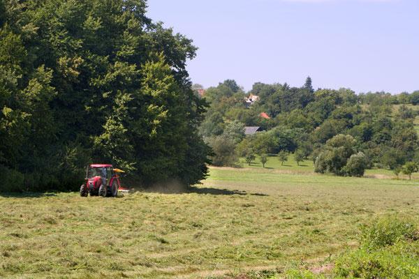 Ak pozemok, ktorý sa vám páči, nie je stavebný, ale je evidovaný ako poľnohospodárska pôda alebo les, je potrebné vybaviť jeho vyňatie zpôdneho fondu. Vybavenie vyňatia je však veľmi nákladná akomplikovaná záležitosť. Výšku poplatkov sa dozviete na Slovenskom pôdnom fonde.
