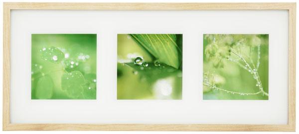 Obraz Erikslund – zelená hmla, motív Koichi Kajino aHakan Jansson, 72 × 32 cm, 9,99 €, IKEA
