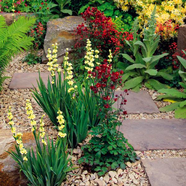 Vzáhrade chýba klasický trávnik, priestor vypĺňajú namulčované kamene aštrkové plochy. Má to aj praktický význam, burina tu nemá šancu.