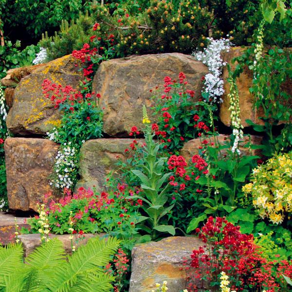 Kamene sa cez deň príjemne nahrievajú, a preto sa ana nich vlete dobre posedáva. Akumulované teplo jezároveň prínosné aj pre niektoré rastliny, napríklad  pre rôzne druhy byliniek atrvaliek pôvodom zo Stredomoria ako pamajorán, čistec či šalvia.