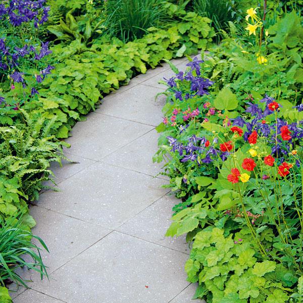 KVETINOVÝ LEM CHODNÍKA. Na výsadbu okolia chodníkov sa často zabúda. Na tieto miesta sú vhodné skôr kompaktnejšie kvitnúce alebo listami okrasné trvalky. Ideálne sú tie, ktoré najdlhšie kvitnú, napríklad kocúrnik, pakosty, klinčeky, kuklíky, čiernohlávok azvončeky. Zdruhov, ktoré sú okrasné listom, použite heuchery. Vyhýbať sa netreba ani bylinkám, ako sú levanduľa, šalvia, tymián, čistec či saturejka. Kchodníkom vpolotieni atieni sa hodia astilby, nižšie papraďorasty, pľúcniky či bergénie. Ideálne je, ak ich vysádzate vdňoch, keď je pod mrakom.